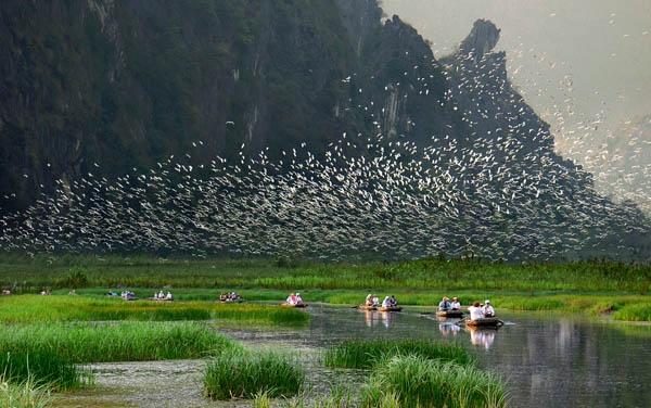 Tour Vân Long - Kênh Gà - Vân Trình