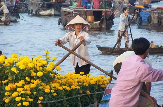 Tour Hà Nội - Cần Thơ - Vĩnh Long