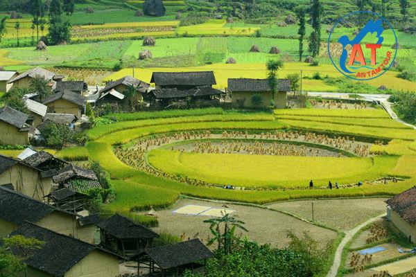 Tour Hà Giang 4 ngày 3 đêm ( khởi hành ngày tết )