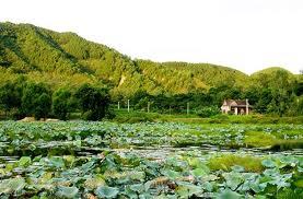 Tour Ngã ba Đồng Lộc - Thiên Cầm - Quê Bác ( đi bằng tàu )